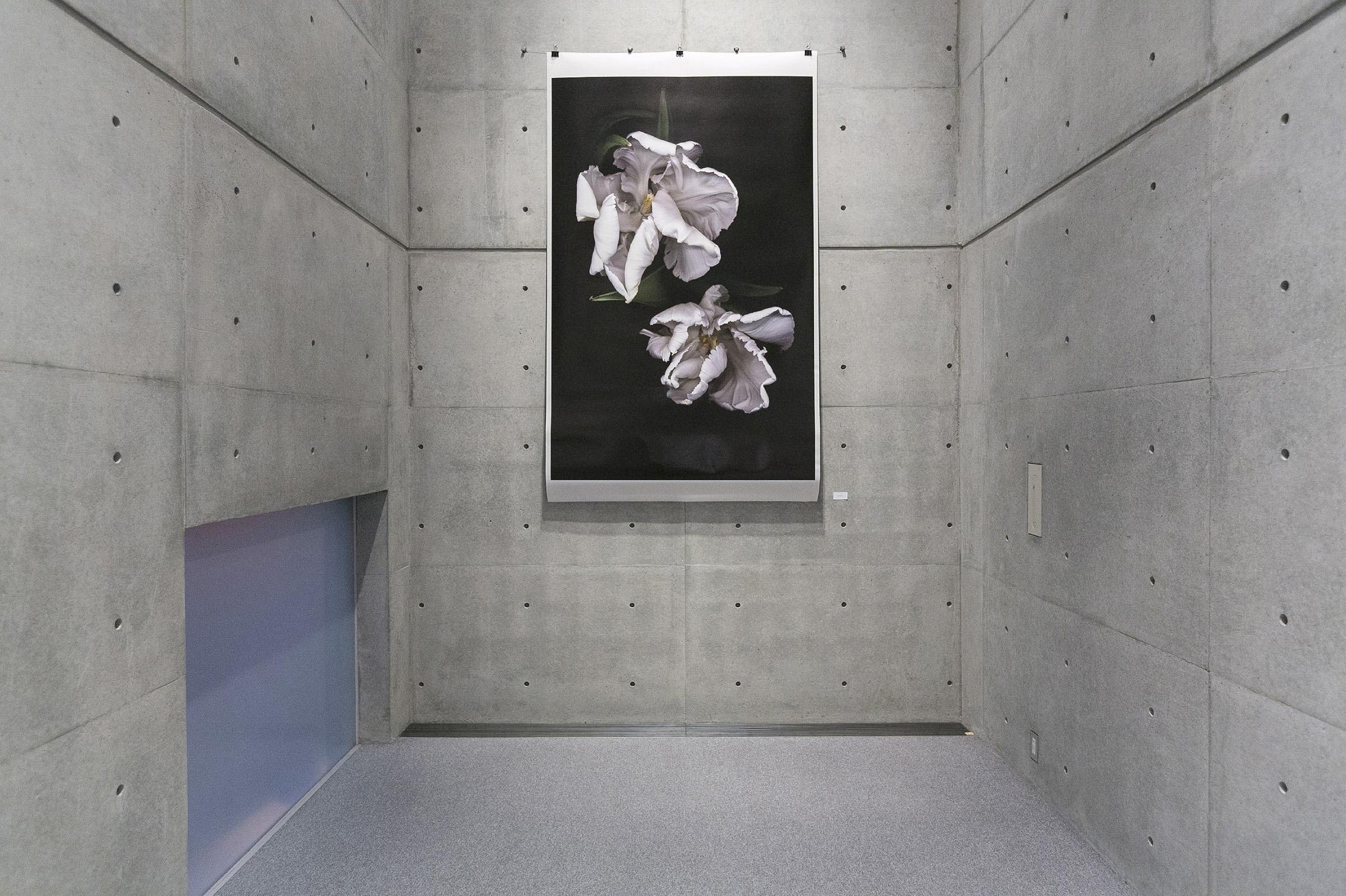 Tokyo Art Museum